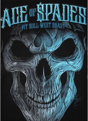 Koszulka Blue Skull 11