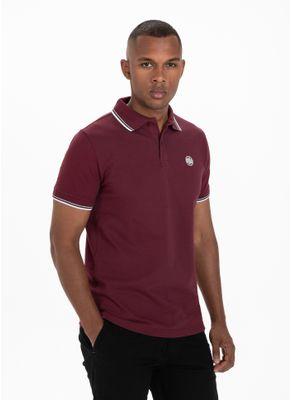 Koszulka Polo Regular Logo Stripes 7